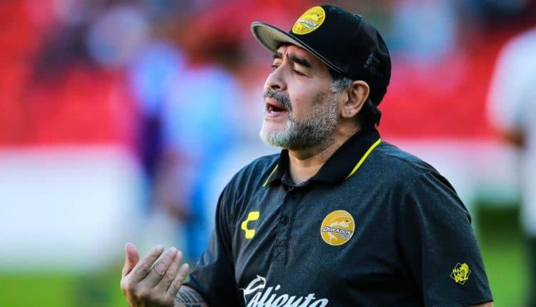 أسطورة كرة القدم مارادونا