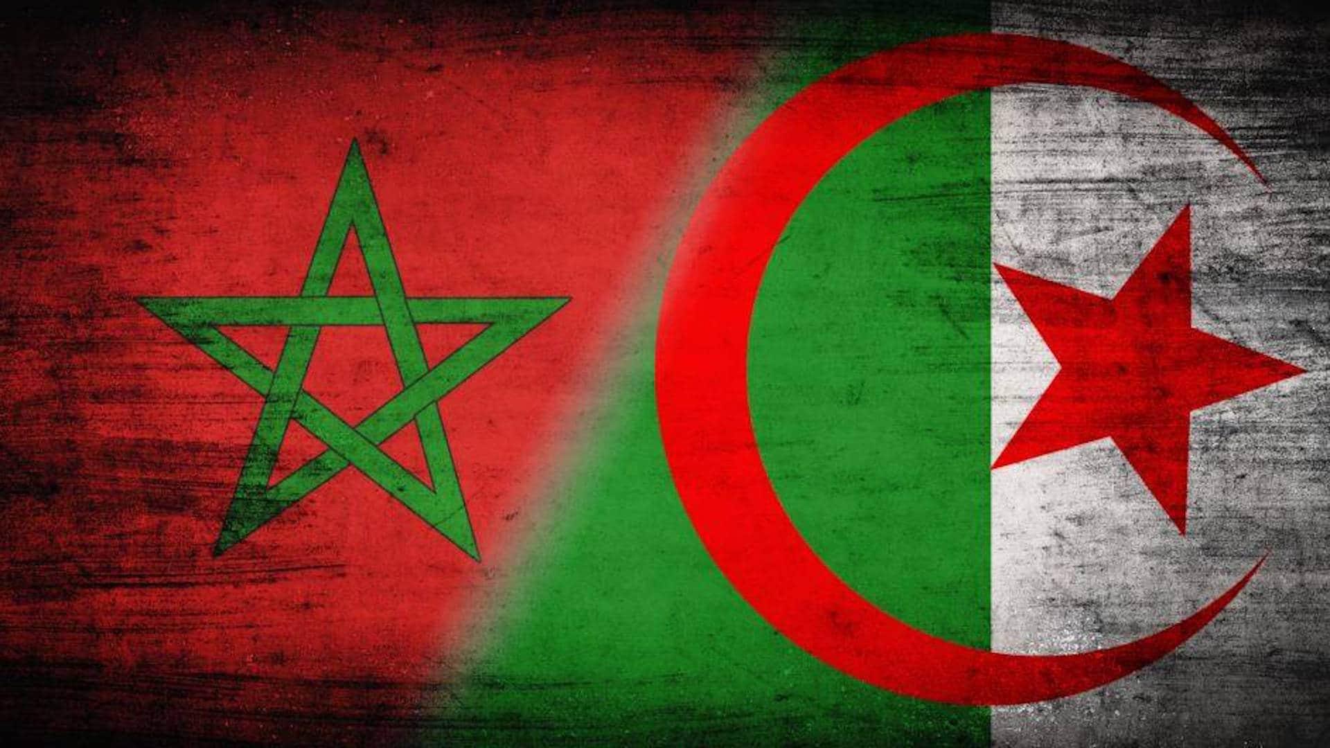 ما هي بدائل المغرب عن الغاز الجزائري بعد قطع العلاقات؟