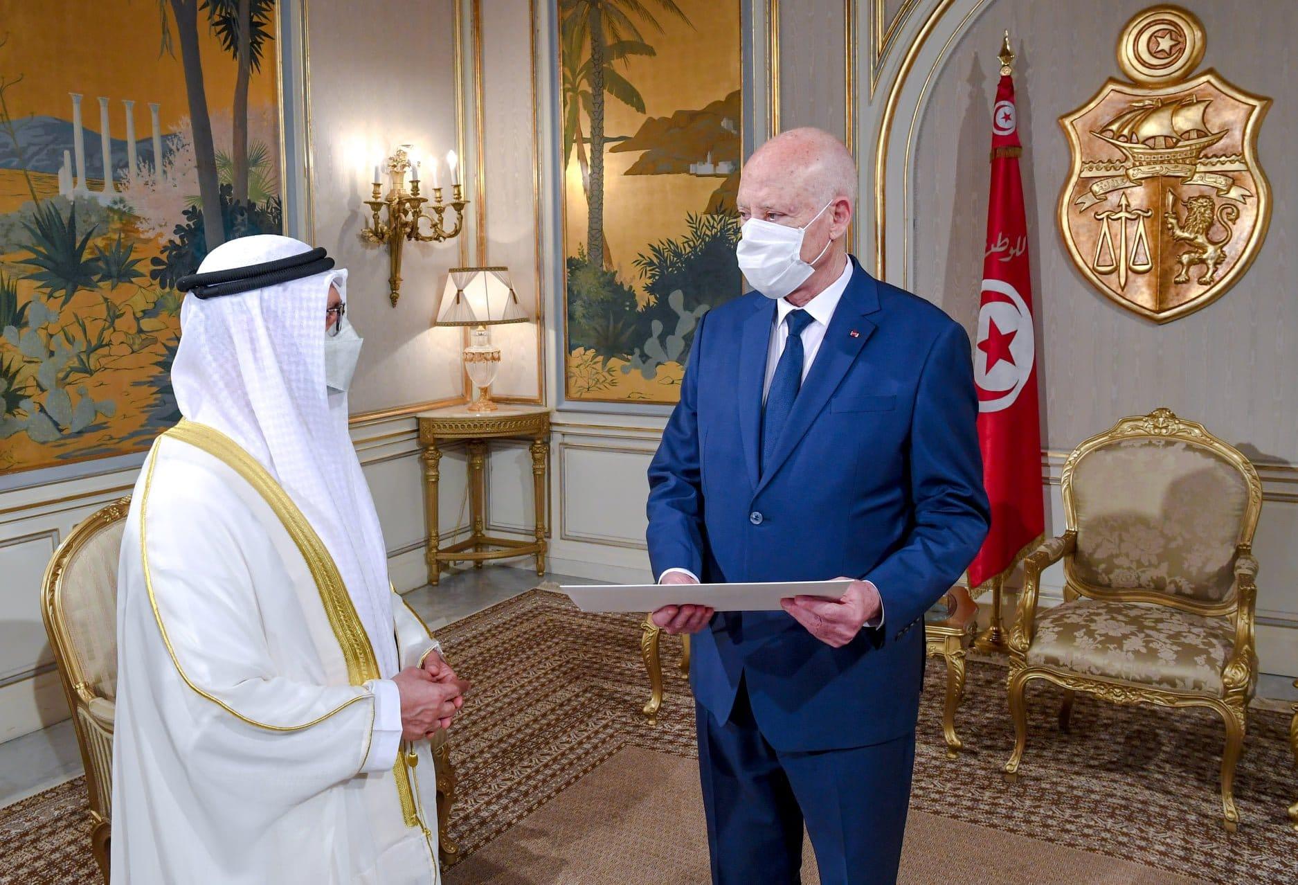 تفاصيل لقاء أنور قرقاش بقيس سعيد تزامنا مع تقارير تحدثت عن وقوف الإمارات وراء انقلاب تونس