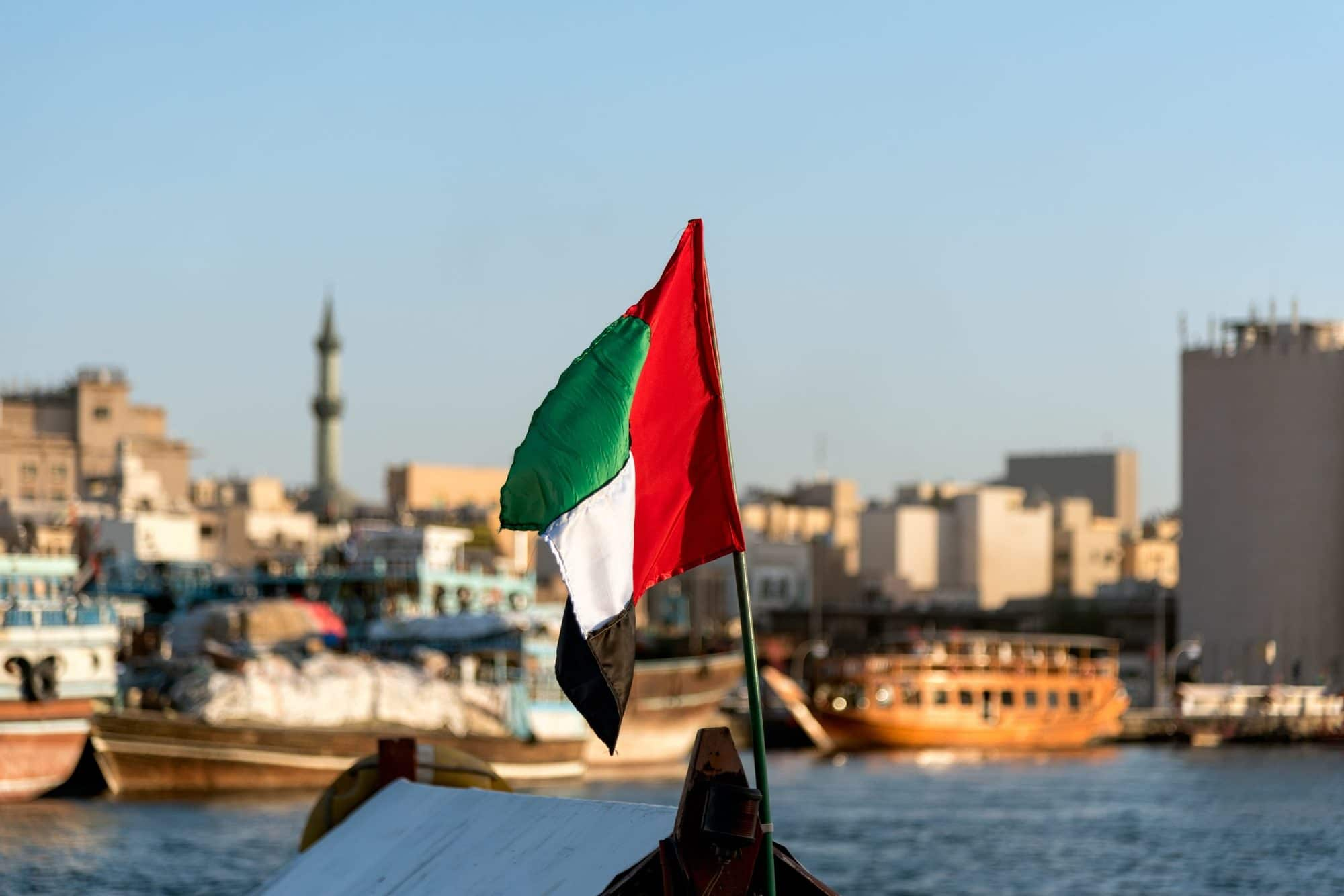كاتب: انسحاب إماراتي قريب من ملف اليمن وليبيا وتونس.. ما علاقة طالبان