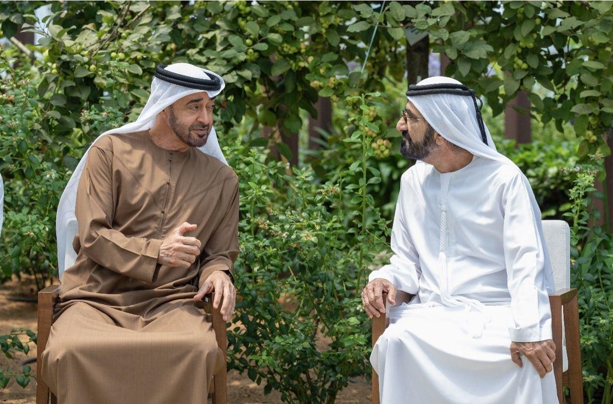 مركز هداية .. ذراع أبوظبي لتأليب الغرب ضد المسلمين وتحسين سمعتها حول العالم