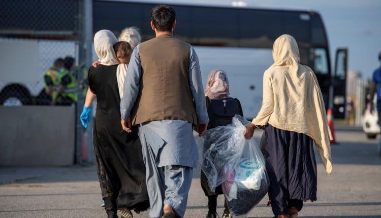 اللاجئين الافغان في تركيا1